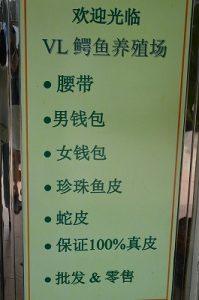 ワニ 養殖場