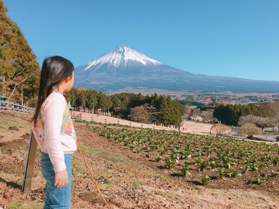 お子さまと富士山画像