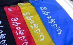 サイドラインズ 副業 復業 拳骨パンチ 田子ノ浦ロック